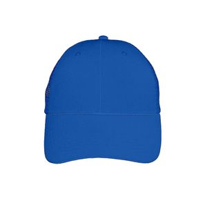 Big Accessories 6 Panel Mesh Trucker Hat